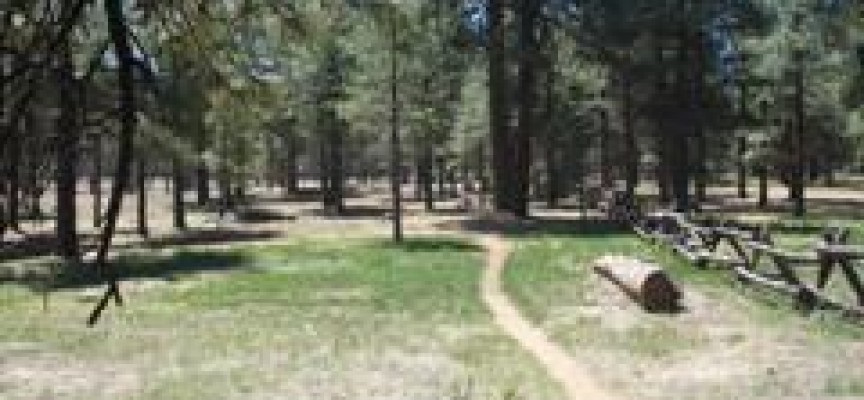 Flagstaff Biking Organization's 2011 season preview!