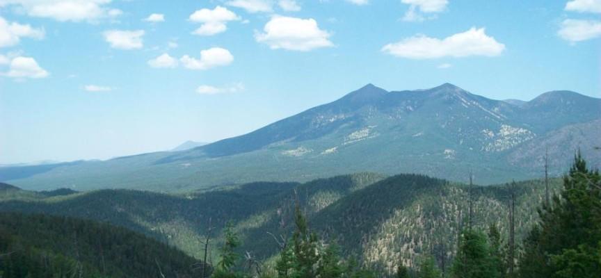 FBO's Comment Letter for the Mount Elden Dry Lake Hills Recreation Planning (MEDL) Proposed Action