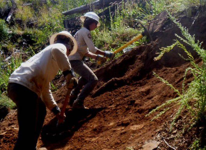 Little Bear Trail Work Project, Fall 2015