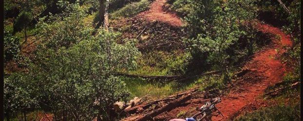 Trail program wrap up 2019